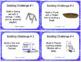 LEGO Task Cards