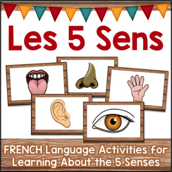 LES 5 SENS The Five Senses Activities in FRENCH