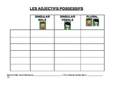 LES ADJECTIFS POSSESSIFS: Fillable Chart on French Possessive Adjectives