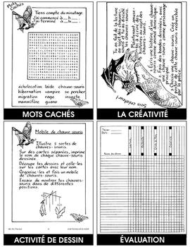 LES CHAUVES-SOURIS Gr. 5-6
