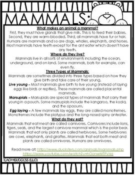 Introducing MAMMALS (Animal Classification)