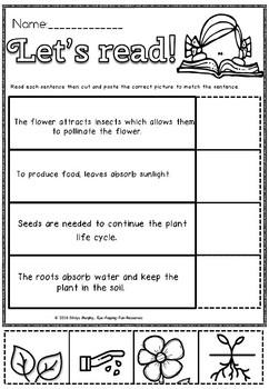 LET'S READ ABOUT PLANTS