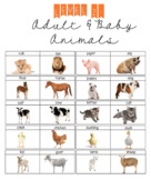 LEVEL 2: Adult and Baby Animals (interactive & regular level 2)