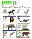LEVEL 3: Animal Body Parts
