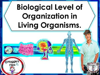 LEVELS OF ORGANIZATION -FROM CELL TO ORGANISM