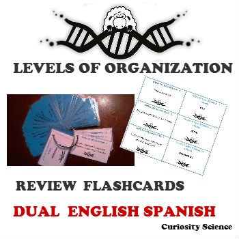 LEVELS OF ORGANIZATION FLASHCARDS DUAL FOR ELLs