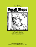 Small Steps: A Novel-Ties Study Guide