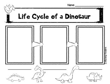 LIFE CYCLE OF A DINOSAUR