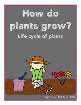 LIFE CYCLE OF PLANTS ( Scientific lab book, activities, pr