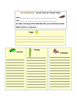 LIFE CYCLE OF A BUTTERFLY: METAMORPHOSIS: A CHARTING ACTIVITY