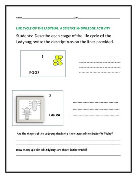 LIFE CYCLE OF THE LADYBUG: A SCIENCE KNOWLEDGE ACTIVITY