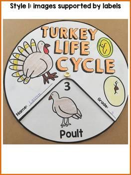 LIFE CYCLE CRAFT ACTIVITES: WHEELS: BIRDS