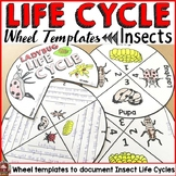 LIFE CYCLE CRAFT ACTIVITES: WHEELS: INSECTS