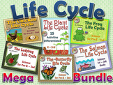 Six Unit LIFE CYCLES BUNDLE butterfly frog chicken plant ladybug salmon