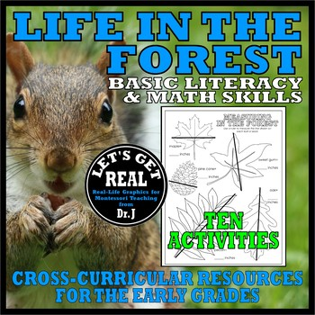 LIFE IN THE FOREST (Basic Skills Activity Pack)