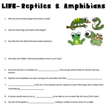 life reptiles amphibians video questions by finding science tpt rh teacherspayteachers com modern biology study guide answer key characteristics of amphibians modern biology study guide answer key characteristics of amphibians