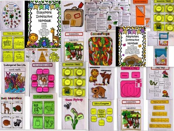 LIFE SCIENCE BUNDLE - Ecosystems/Adaptations - Interactive notebooks ++++MORE!