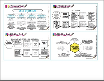 LIFE SCIENCE +Thinking Tool Diagrams