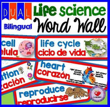 LIFE SCIENCE WORD WALL- DUAL BILINGUAL