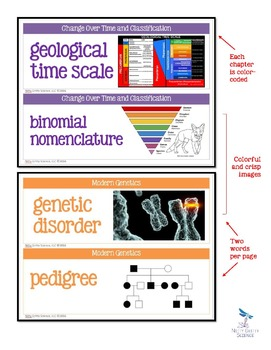 LIFE SCIENCE Word Wall Bundle - Biology Vocabulary 450+ words!