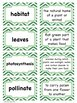 LIFE Science Scenes Writing Prompts and Vocabulary Cards for Centers