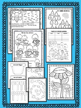 SPRING  ~ NO PREP SUBSTITUTE / EMERGENCY LESSON PLANS