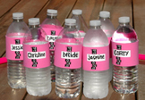 LIGHT PINK H2O ID® Reusable Colorful Water Bottle Bands, Labels, Sleeves, Wraps