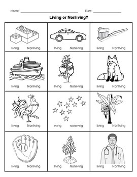 LIVING AND NON-LIVING - 5 activities and test - English & Spanish