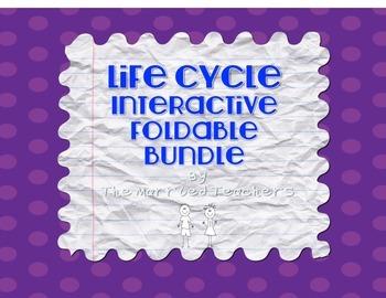 LIfe Cycles Interactive Foldable Bundle