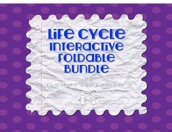 LIfe Cycles Interactive Foldable Bundle