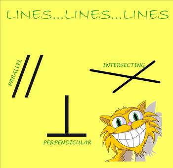 LInes, lines, everywhere lines!