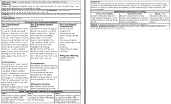 LLI BLUE kit Level E *w/ DIFFERENTIATION* Leveled Literacy