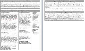 LLI BLUE kit Level K *w/ DIFFERENTIATION* Leveled Literacy