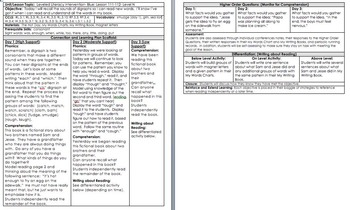 LLI BLUE kit Level N *w/ DIFFERENTIATION* Leveled Literacy MATERIALS INCLUDED
