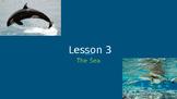 LLI Blue Lesson 3