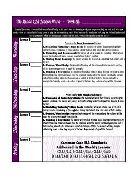 LLI (Purple Kit) Lesson Plan Template