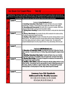 LLI (Red Kit) Lesson Plan Template