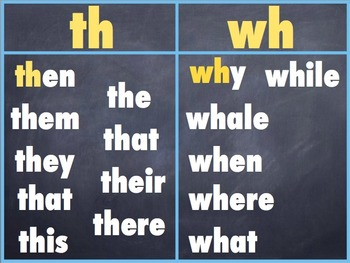 LLI blue kit Level E lessons POWER POINT SLIDES Leveled Literacy