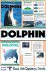 All About Dolphins Nonfiction Unit