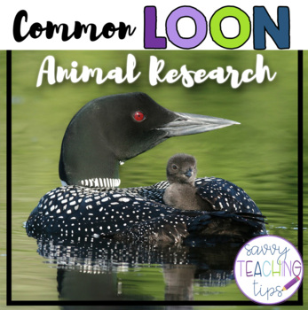 LOON - nonfiction animal research