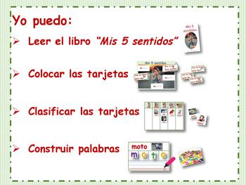 LOS CINCO SENTIDOS/ FIVE SENSES