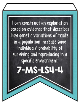 LOUISIANA MIDDLE SCHOOL SCIENCE STANDARDS BANNERS - CHALKBOARD & TURQUOISE
