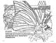 LOUISIANA  U Haul History lesson in artwok