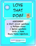 Love that Dog by Sharon Creech - Assessment