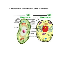 LS.2 Cell Structure and Division