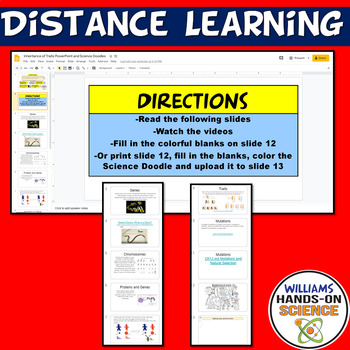 LS3.A Inheritance of Traits LS3.B Variation of Traits Doodle Notes PowerPoint