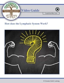 LYMPHATIC SYSTEM: FuseSchool Biology Video Guide