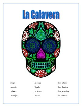 La Calavera-Label Parts of the Face -Spanish- Word Search