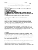 La Casa en Mango Street - subject/verb/cognate review of S