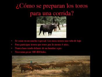 La Corrida de Toros: Bull Fight